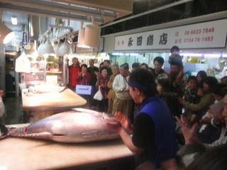 木津市場マグロの解体ショー1